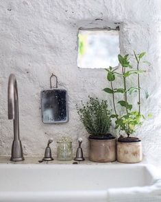 Badezimmer Pflanzen im Badezimmer Pilgrims also make an excellent addition to your Thanksgiving deco Bathroom Inspiration, Interior Inspiration, Bathroom Ideas, Bathroom Wall, Master Bathroom, Paris Bathroom, Master Baths, Bathroom Layout, Garden Inspiration