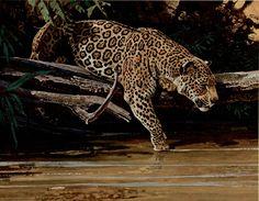 bob kuhn art | Bob Kuhn - Jaguar, Niagara Falls Gallery