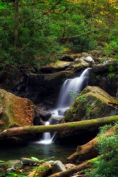 Lower part of Grotto Falls - roaring fork motor nature trail, smoky mountains