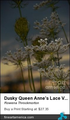 Fulfillment by Fine Art America. All Images Copyright 2014-2015 Rowena Throckmorton. All Rights Reserved.