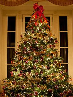 Tips for your tree - wrap every branch with white lights, hang ornaments deep in the tree and on the tips of branches, wrap garland 4 times from top to bottom.