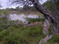 Boerfontein,