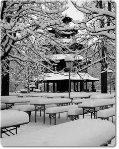 Englischer Garten München – Winter | phillipgray.