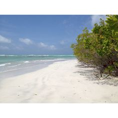 A Paradise on Earth. Varadero Beach. Morrocoy National Park. Falcón State. Venezuela