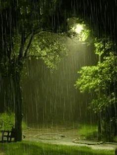 I love rain Abby Walking In The Rain, Singing In The Rain, Rain Gif, Rain Pictures, Smell Of Rain, I Love Rain, Rain Photography, Rainy Day Photography, Street Photography