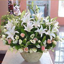 57 Gambar Buket Bunga Mawar Ulang Tahun Terbaik Jakarta Floral