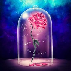 beauty and the beast flower  enchanted rose disney
