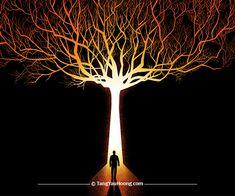 The-Tree-Of-Light
