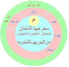 Coran Tajwid, Tajweed Quran, Starting School, Learning Arabic, Speech Therapy, Life Quotes, Language, Teacher, Education