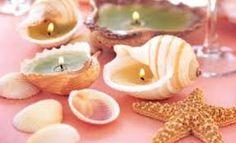 Resultado de imagen para que se puede hacer con caracoles de mar