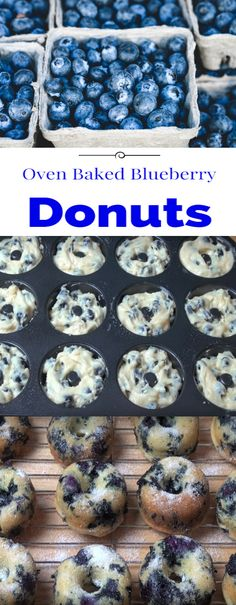 Oven Baked Blueberry Donuts - Dessert and Snack Recipes - Baked Blueberry Donuts, Baked Doughnuts, Blueberry Recipes, Blueberry Ideas, Yummy Donuts, Köstliche Desserts, Dessert Recipes, Snack Recipes, Baked Donut Recipes