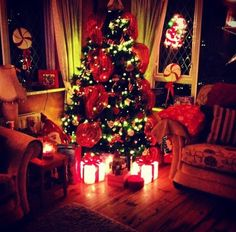 """#Twitter Entry - @lottiegeorie1 : """"@CplJobs home to me is surrounded by my family in front of the fire with the Xmas tree twinkling """" #NoPlaceLikeIt #christmas #ireland"""