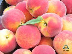 """Однозначно, фрукты - это самый естественный и полезный для нас источник углеводов (энергии).  У доктора Дугласа Грема в книге """"Диета 80\10\10"""" (книга о пользе высокоуглеводной\фруктовой диеты), есть прекрасное пояснение, раскрывающее смысл этого факта.  〰  Цельные свежие фрукты сами по себе не повышают уровень сахара в крови🙅  Это может произойти только если кроме фруктов вы едите много жирной, тяжёлой и не полезной пищи.🍗🍲🍦  Только так!☝   👉И именно жир, облепливая стенки сосудов и…"""