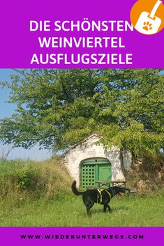Weinviertel am Weekend. Austria, Road Trip, Places To Visit, Journey, Culture, House Styles, Holiday, Photography, Travel