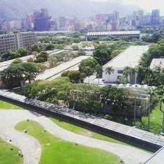 Universidad Central de Venezuela  Fotografía cortesía de @yokagoncalves…