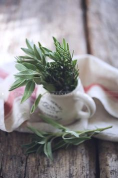 Stockiste - Creative imagery for creative minds. Sage & rosemary by Rebeca G. Sendroiu.  https://stockiste.com/display/sage-rosemary/20715 #Stockiste, #Photographer, #RebecaGSendroiu, #ContentMarketing, #Storytelling, #Stockphoto, #Sage, #Rosemary, #Spices,