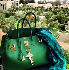Hermes bag and Louis Vuitton bag charm and Alexander McQueen scarf