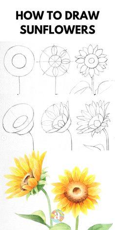 Easy Flower Drawings, Beautiful Flower Drawings, Flower Art Drawing, Sunflower Drawing, Flower Drawing Tutorials, Art Drawings Sketches Simple, Floral Drawing, Pencil Art Drawings, Beautiful Flowers