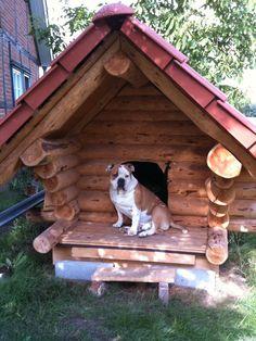 Blockhaus Hundehütte von Daniel für Murphy...