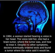 In a woman started hearing a voice in her head. The voice told her, she had a brain tumor. where the tumor was, and how to treat it. Despite no other symptoms, doctors eventually ordered tests and found a tumor where the voice said it would be. Funny School Memes, School Humor, Weird Facts, Fun Facts, Unique Facts, Interesting Facts, Mind Blowing Facts, News Around The World, Brain Tumor
