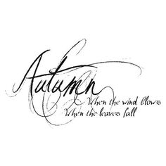 autumn text ❤ liked on Polyvore featuring words, text, article, black, letters, phrase, quotes, filler and saying