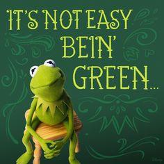 Kermit knows best.