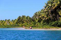 No ar o Guia de Bocas del Toro! O animado Caribe panamenho!