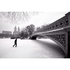 Walking on thin ice at Central Park by pearceleal