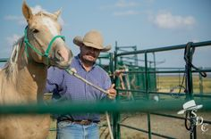 6 Tips every first-time horse owner should know.