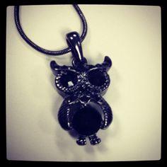 My cute little Friend!! I love my Owl!!