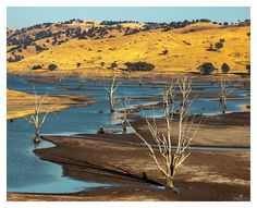 Tallangatta Drought II by mdomaradzki.deviantart.com on @deviantART