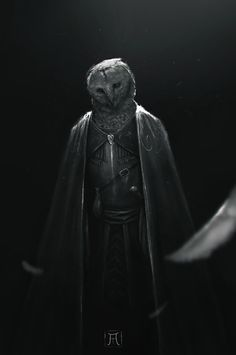 Owl Knight, Igor Krstic on ArtStation at https://www.artstation.com/artwork/dbqX1