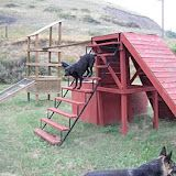 Search Dog and Disaster Dog Agility Equipment Photos and Plans