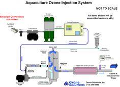 ozone_aquaculture_schematic