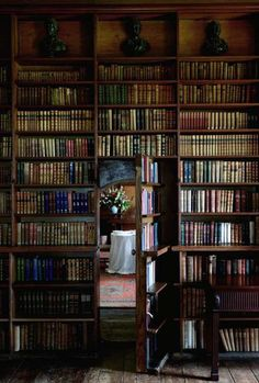 """I saw something like this on Downton Abbey, and now I think it'd be awesome to have a room full of books and have the door """"disguised"""" as part of the bookshelves."""