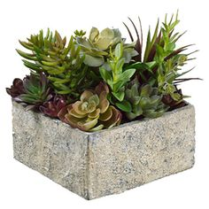 Bring a touch of natural style to your decor with this lovely faux succulent arrangement, showcasing verdant greenery nestled in a stone-inspired planter.