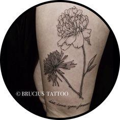 #BRUCIUS #TATTOO #SF #engraving #etching #flora #flowers #chrysanthemum #peony #leg #blackink #lines