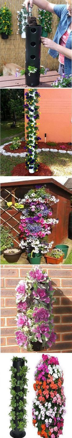 Vertical garden ideas are garden designs that incorporate modern and old fashioned indoor and outdoor set up.