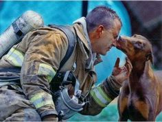 This photograph shows a red Doberman kissing an exhausted fireman. He had just saved her from a fire in her house, rescuing her by carrying her out of the house into her front yard, while he continued to fight the fire.