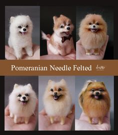 needle felted Pomeranian dogs- NEED! Needle Felted Animals, Felt Animals, Cute Animals, Needle Felting Tutorials, Felt Dogs, Wet Felting, Felt Art, Felt Crafts, Wool Felt