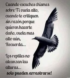 Pin by Mar Lores on frases q me gustan. Wisdom Quotes, Words Quotes, Quotes To Live By, Life Quotes, Positive Phrases, Motivational Phrases, Positive Quotes, Citation Gandhi, Favorite Quotes