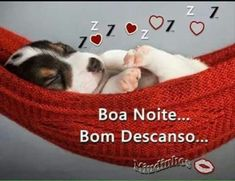 Boa Noite bom descanso 98 - ImagensBomDia.net Gift Amor, Portuguese Quotes, No One Loves Me, Say Hello, Good Night, Animals And Pets, First Love, Humor, Pasta