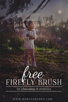 FREE Firefly Brush for Photoshop & Elements! | Find more awesome stuff at www.morganburks.com