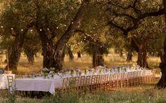 Fiori matrimonio: l'ulivo   simplicitas blog