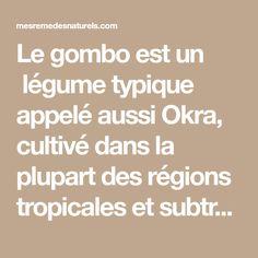 Le gombo est un légume typique appelé aussi Okra, cultivé dans la plupart des régions tropicales et subtropicales, il est disponible dans toutes les saisons tout au long de l'année, vous pouvez le consommer cru, cuit et parfois sous forme déshydratée. Okra contient beaucoup de nutriments, y compris: 80 microgrammes d'acide folique, 21 mg de …