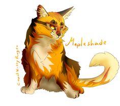 Mapleshade by CountKittyRugen.deviantart.com