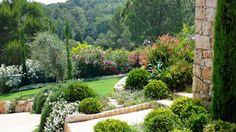 Un jardin méditerranéen en terrasse De la paysagiste Olivia Bochet - Folia paysagiste