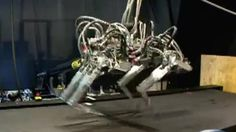 BBC News - BigDog four-legged robot now sports throwing arm. I found this picture with connection to professor Kevin Warwick, the subtitles say it is some kind of dog even though from the picture it looks like some weird robot. But it was interesting to find with Warwick though it's not similar to his work and arm implants.