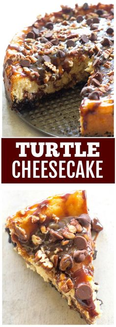 This Turtle Cheesecake is so creamy and topped caramel, nuts, and chocolate chips. This dessert is easy and impressive. #dessert #turtle #cheesecake #recipe #chocolate Fun Easy Recipes, Popular Recipes, Easy Desserts, Dessert Recipes, Delicious Recipes, Kitchen Recipes, Baking Recipes, Turtle Cheesecake Recipes, Chocolate Graham Crackers
