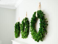 Boxwood wreaths, wreath decor,